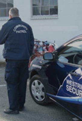 Westridge Security Security Cameras